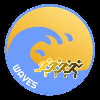 waVes team